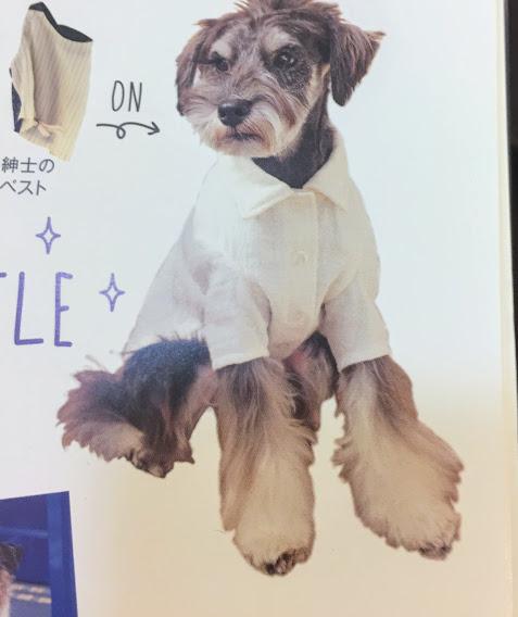 手作りの犬の服と小物
