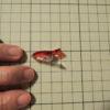 ピン打ち出来ない生地を縫う時のアイテムはこれ!★型紙を吊るすアイテムはこれ!